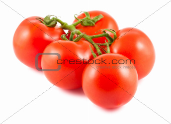 Five red ripe tomatoes