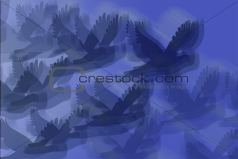 Abstract of Birds in Flight