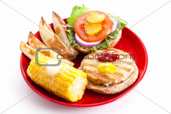 Healthy Eating - Turkey Burger Isolated