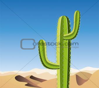 vector cactus in sandy desert