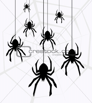 vector hanging spiders and web