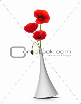 vase with red poppies over white