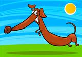 cartoon happy dachshund dog