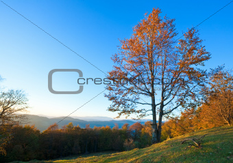 Autumn evening mountain landscape