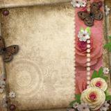 Vintage background with butterfly  and roses for congratulations