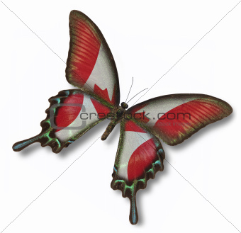 Canada flag on butterfly