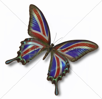 Great Britain flag on butterfly