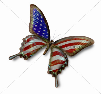 USA flag on butterfly