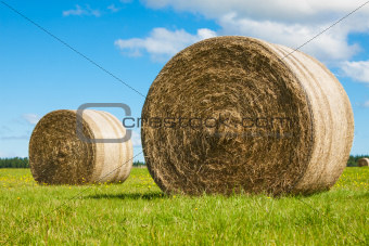 Two big hay bale rolls in a green field