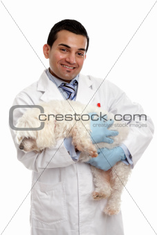 Veterinarian carrying a pet dog