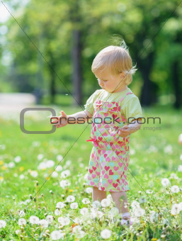 Baby playing with dandelions in park