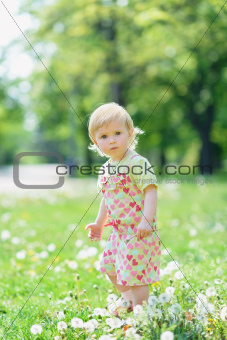 Baby on dandelions field