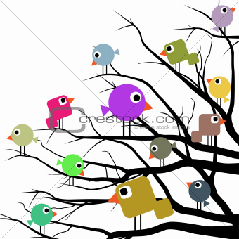 Cheerful birds