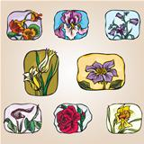 set of icons flowers