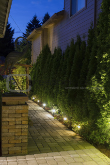 Backyard Garden Path at Night