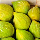 Figs in Market
