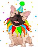 French bulldogs Birthday