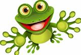 happy frog