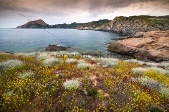 Corsica coastline