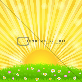 Sunburst and green meadow