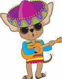 Chihuahua Guitar