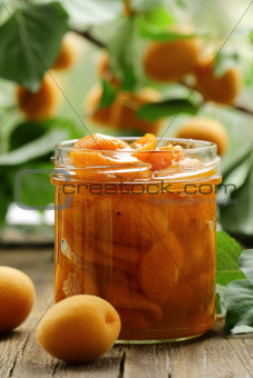 apricot, peach jam with pieces of fruit