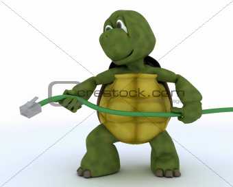 tortoise with a RJ1 cable