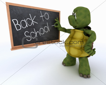 tortoise with school chalk board back to school