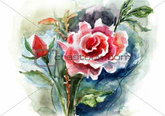 Red Roses, watercolor illustration