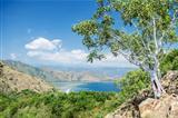coast near dili east timor