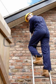 A workman up a ladder
