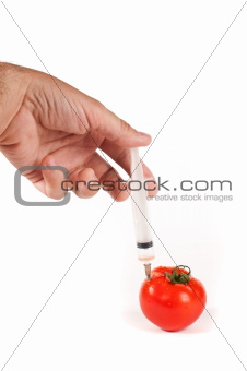 Tomatos for genetic reserach