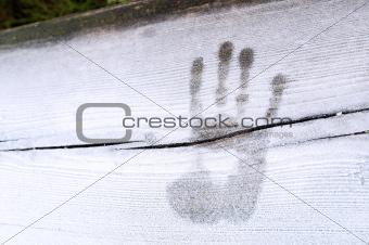 A palmprint