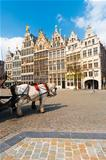 Antwerp GuildHouses  Horses Daytime V