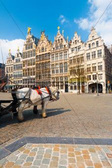 Antwerp GuildHouses  Horses Daytime V