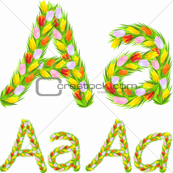 Vector font type letter A made from flower tulip