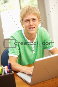 Teenage Boy Using Laptop At Home