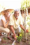 Senior Couple Relaxing In Garden