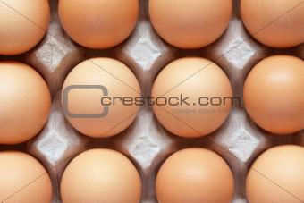 Closeup of brown eggs in carton tray