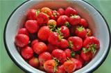 Fresh strawberries in round metal bowl