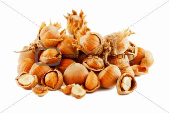 Hazelnut Composition