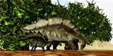 Stegosaurus 03