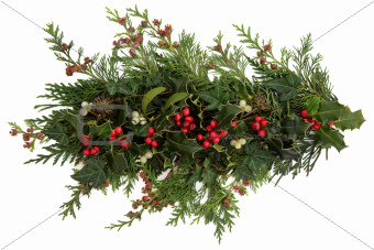 Holly, Ivy, Mistletoe and Cedar Leaves