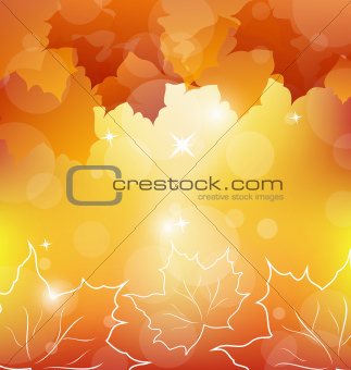 Autumn orange background with maple leaves