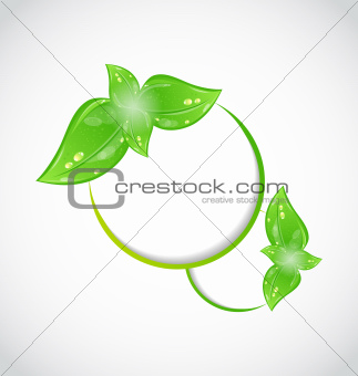 Abstract frame with eco green leaves