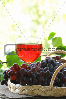 brush of black organic grapes with leaves on wooden table