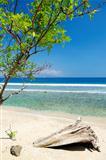 beach and coast near dili in east timor