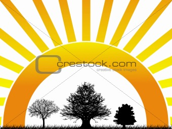 Abstract vector illustration of three tree on sunrise background