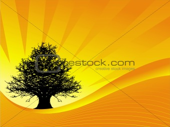 Abstract vector of tree on sunset background