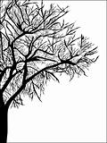Abstract vector of tree on white background 